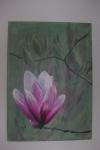 magnolia_800x1200.JPG